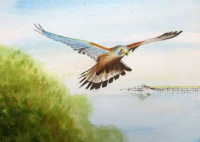 Flight over Weston-Super-Mare
