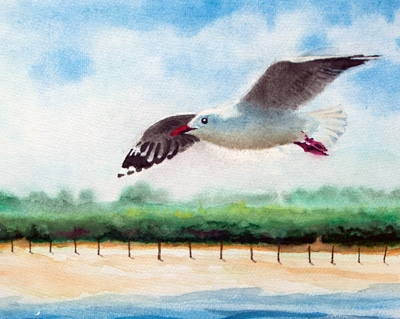 Seagull Over Uphill Sands